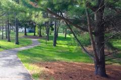 Greenway Paths